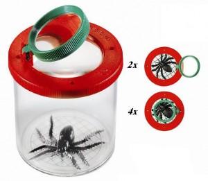 מיכל חרקים עם זכוכית מגדלת